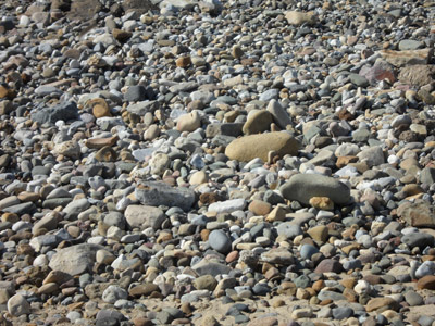 Free Photo of Beach Pebbles
