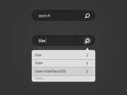 Dark Search w/ Tooltip Results